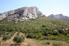Alpilles - Paysage de provence
