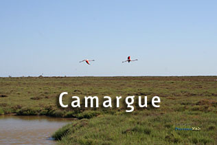 Photos Camargue HD