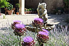 Bed and breakfast Provence: Mas de Ravert