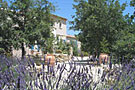 Bed and breakfast Provence: Le Clos des Lavandes