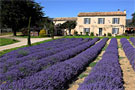 Bed and breakfast Provence: Domaine Saint Jacques et spa
