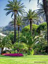 Month of Gardens in Menton