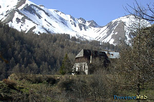 Allos, chalet in the mountain