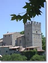 Esparron de Verdon, château