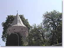 Saint Leger les Melezes, tower