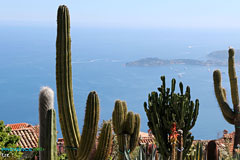 Eze, exotic plants
