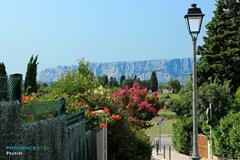 Peynier, la Montagne Sainte Victoire