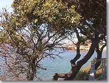 http://www.provenceweb.fr/grafiq/villes13/sausset/mer2.jpg