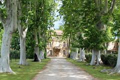 Saint Martin de Crau - Bed and breakfast