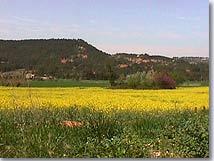 Saint Antonin sur Bayon, paysage