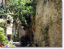 Mirabel aux Baronnies, tiny street
