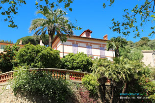 Bormes les Mimosas, house with palm tree