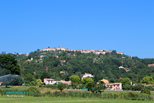 Montauroux - The village