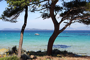 Porquerolles, the sea