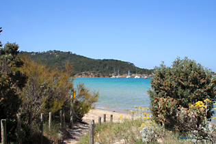 Porquerolles, path to the beach