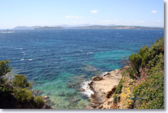 Porquerolles, cliffs