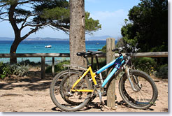 Porquerolles - Bike ride