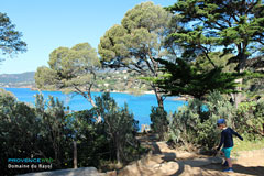 Le Rayol Canadel Village Of The Var On The Sea Side Provence Web