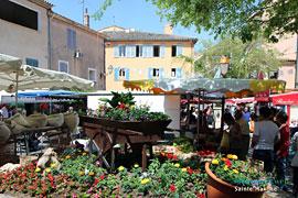 Sainte Maxime Var Provence Web