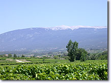 Ventoux mountain, view from Methamis