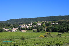 Saint Roman de Malegarde, the village